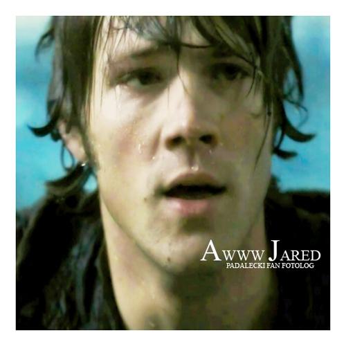 Jared*