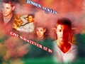 Jensen Ackles Wall - jensen-ackles wallpaper