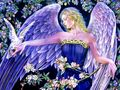 Angel And Dove,Wallpaper - angels wallpaper