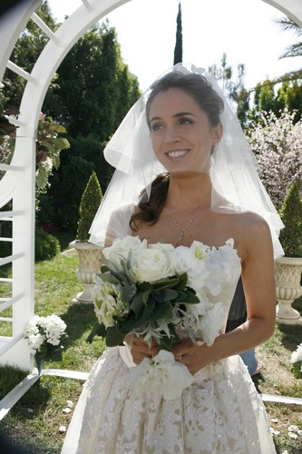 Dollhouse Hintergrund containing a bridesmaid entitled Vows-Season 2 Premiere