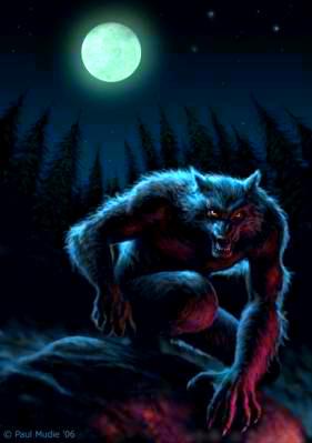 Werewolves پیپر وال called Werewolf