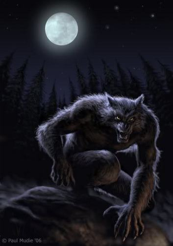 Werewolves wallpaper called Werewolves