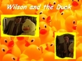 Wilson and the Duck