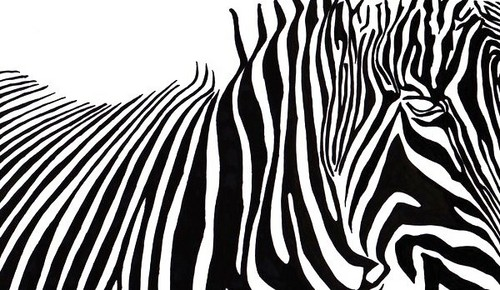 zebra stripe wallpaper stuff - photo #28