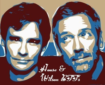 house wilson bromance