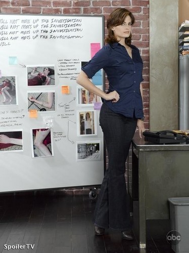 Stana Katic fond d'écran possibly containing a sign, a well dressed person, and a pantleg, pantalon entitled season 2