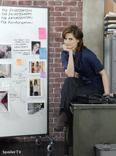 Stana Katic karatasi la kupamba ukuta with an electric refrigerator titled season 2