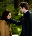 twilight & new moon