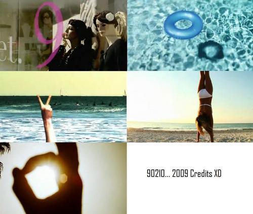 90210 Theme... 9.0.2.1.0