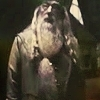 Demande de partenariat :: Time Turner, Au temps des maraudeurs Albus-Dumbledore-albus-dumbledore-8158725-100-100