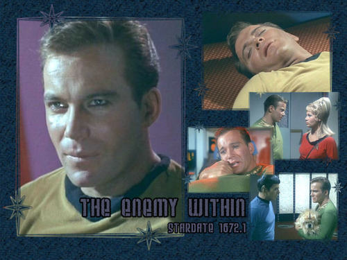 James T. Kirk fondo de pantalla probably with a sign titled Captain Kirk tos