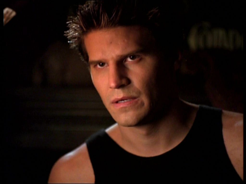 david boreanaz angel season 1 - photo #24