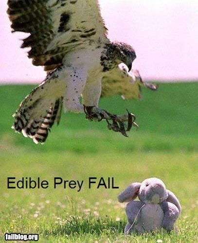 Edible Prey