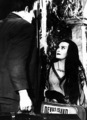 Herman & Lily - the-munsters photo