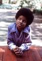 Michael))) - michael-jackson photo