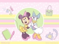 Minnie and bunga aster, daisy wallpaper