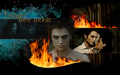 robert-pattinson - New Moon - Edward  wallpaper