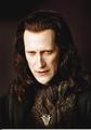 New Stlls of Volturi