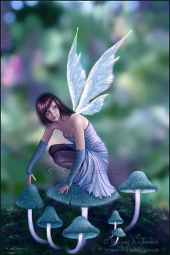 Rachel Anderson - Fairy & Fantasy images Periwinkle HD ...