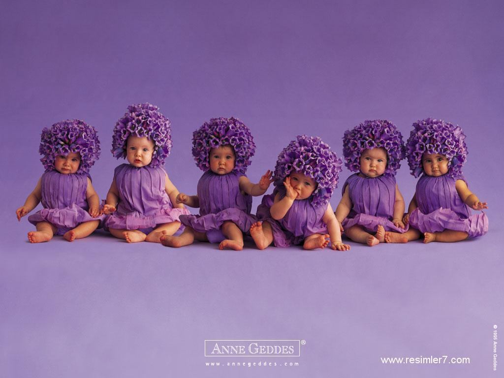 Purple bloem Babies for Sylvie