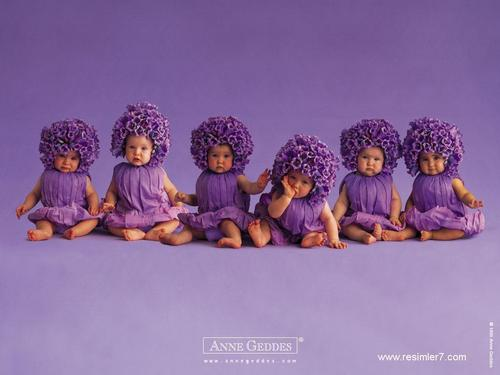 Purple Flower Babies for Sylvie