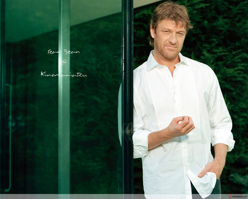 Sean Bean wallpaper possibly with a revolving door titled Sean Bean