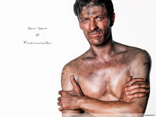 Sean Bean wallpaper with a hunk titled Sean Bean