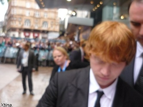 rupert grint wallpaper with a business suit and a suit called UK Premiere