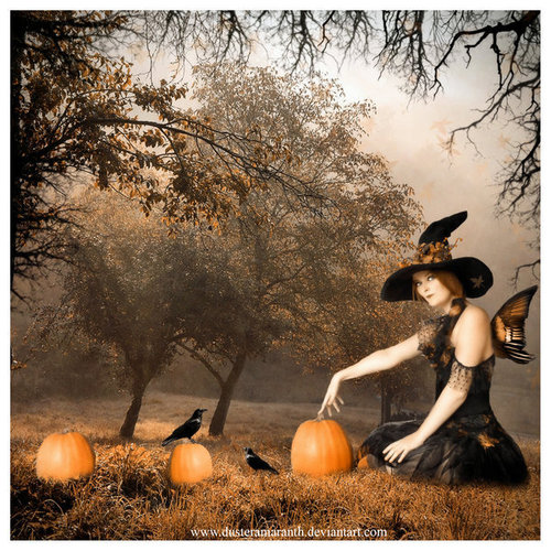 Witches - halloween Photo