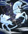 death on his white horse - the-grim-reaper photo