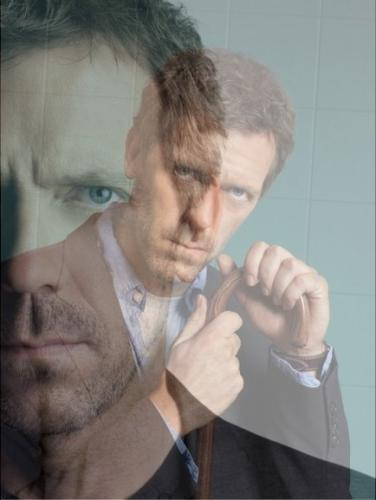 Hugh Laurie wallpaper titled hugh laurie