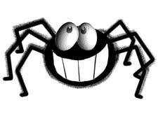 steve the spider!