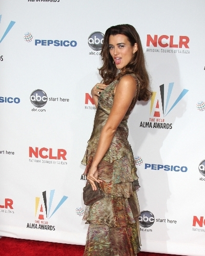 2009 Alma Awards
