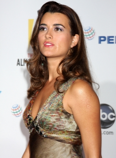 2009 Alma Awards