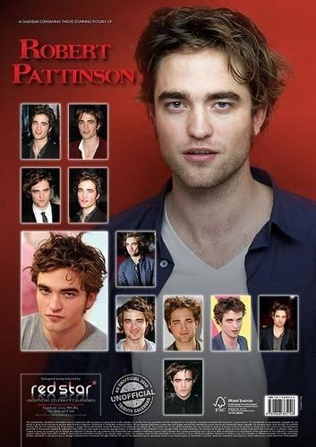 Another Rob's Calendar 2010