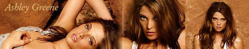 Ashley Greene Banner