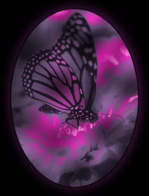 Purple Butterflies Wallpaper