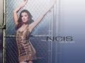 ncis - Cote de Pablo wallpaper