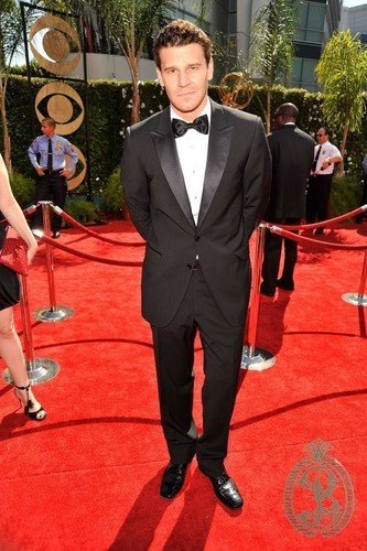 David at the Emmys