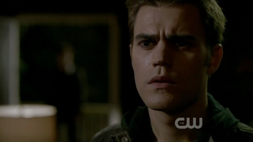 Damon and Stefan Salvatore 壁紙 possibly containing a portrait called Episode 1.01 - Pilot