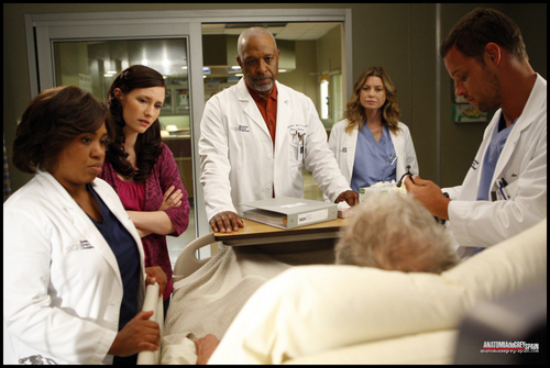 Grey's Anatomy - Episode 6.04 - Tainted Obligation - Promotional Fotos