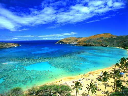Masquerade wallpaper probably with a beach entitled Hawaii