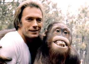 Hot Smile for Sylvie (Clint Not The Gorilla)