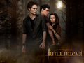 Luna Nueva - Official Wallpapers - twilight-crepusculo wallpaper