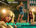 Melrose Place wallpapers