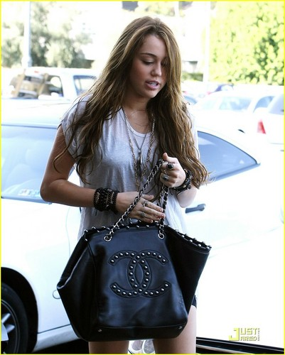 Miley in Studio City
