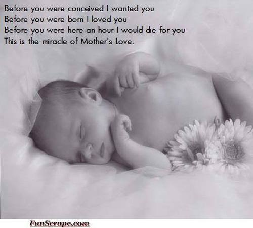 Mother amor quote