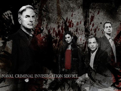 NCIS wallpaper possibly with a business suit and anime called NCIS