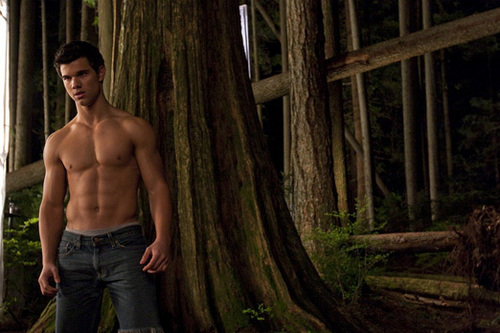 Edward Cullen vs. Jacob Black wallpaper probably with a hunk called New Moon <3