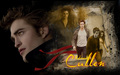 robert-pattinson - New Moon - Cullen wallpaper